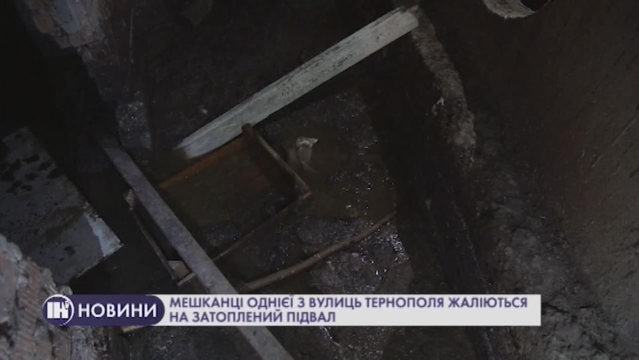 Мешканці однієї з вулиць Тернополя жаліються на затоплений підвал