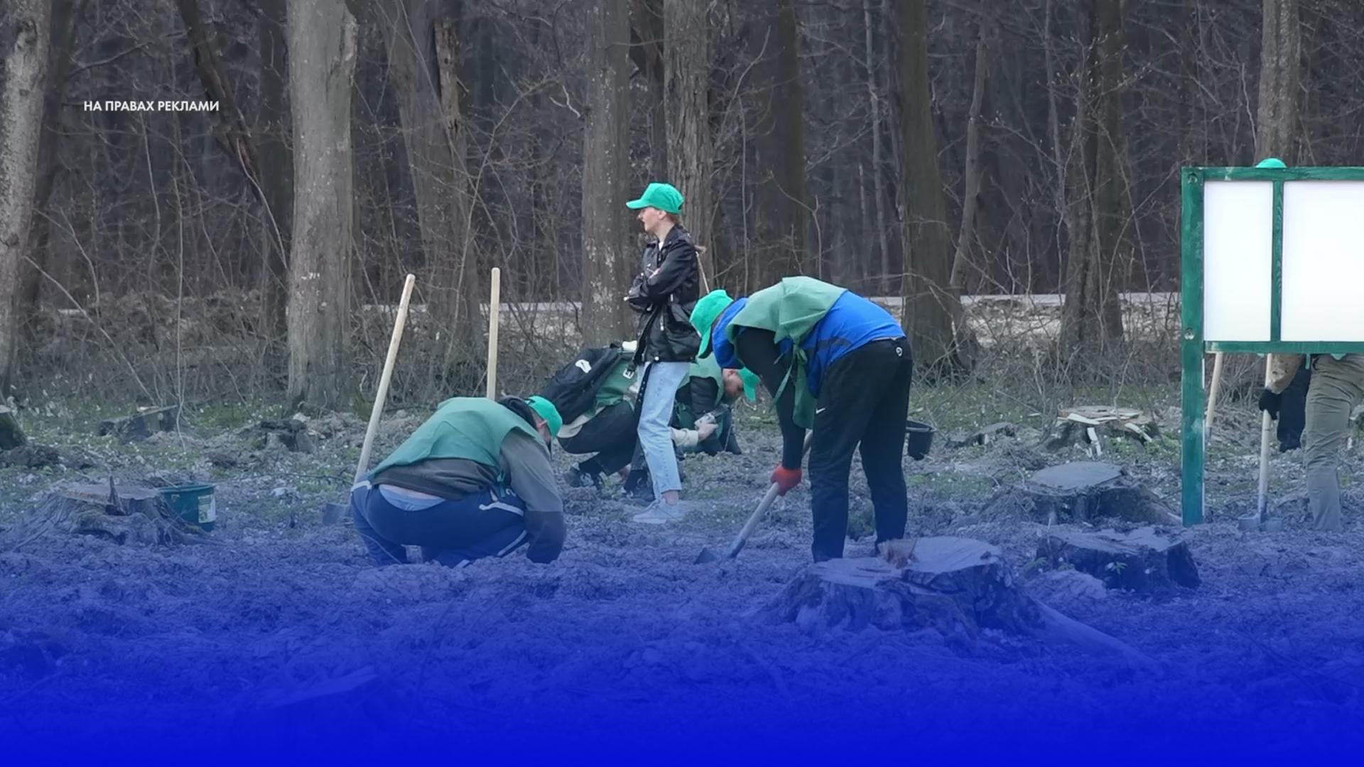 «Створюємо ліси разом»: на Чортківщині висадили тисячі саджанців дуба