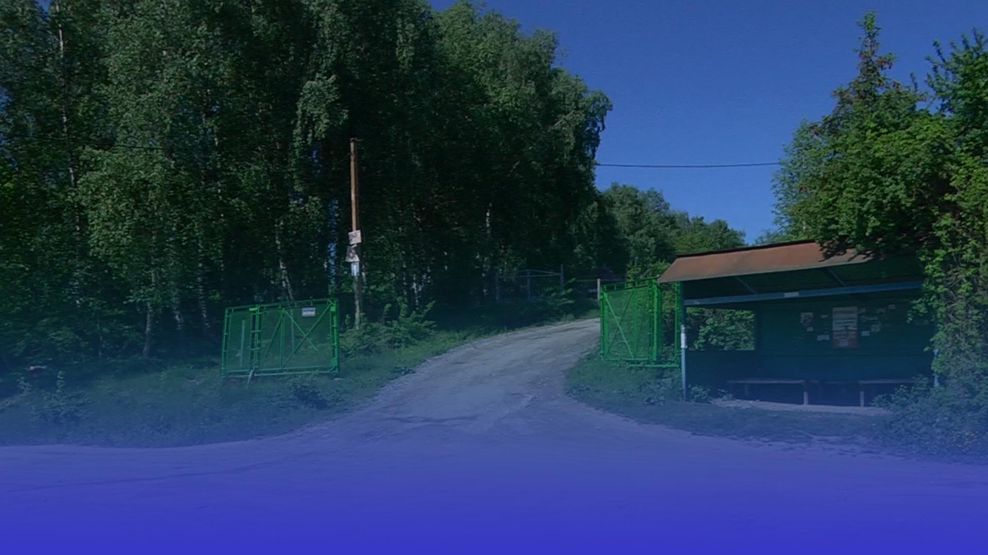Чому вартість проїзду до Петриківських дач зросла до 10 гривень і що кажуть пенсіонери