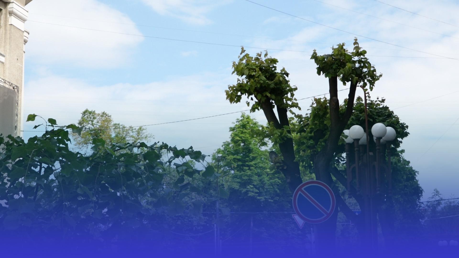 Спека ненадовго: коли на Тернопільщині прогнозують дощі з грозами