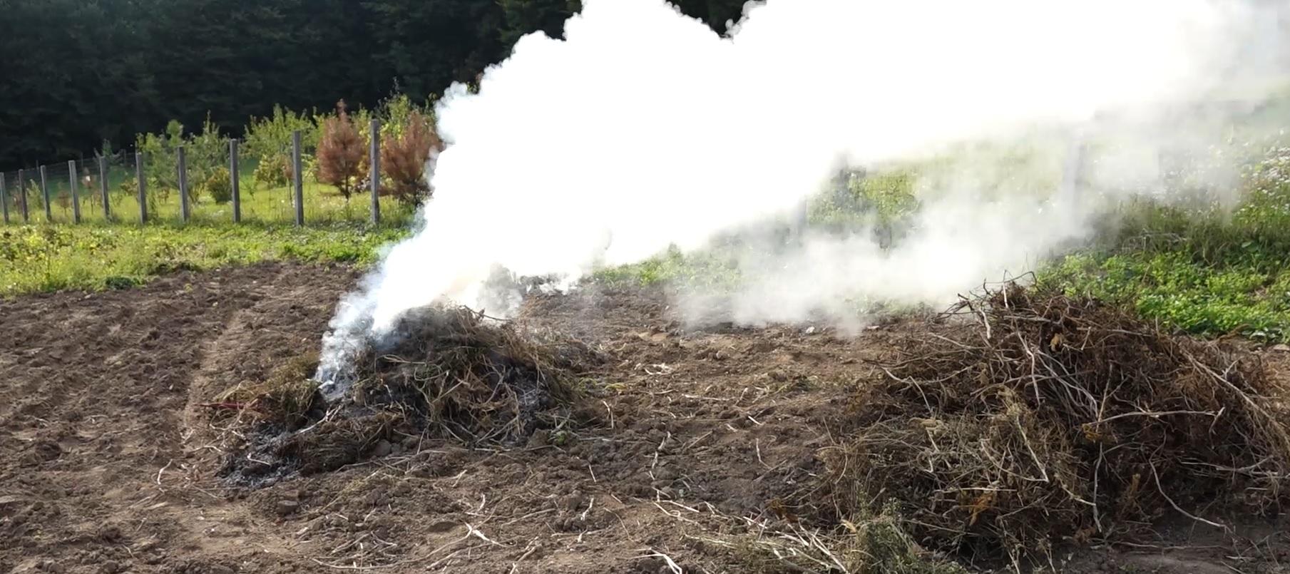 Як штрафують паліїв рослинних залишків у Тернопільській громаді