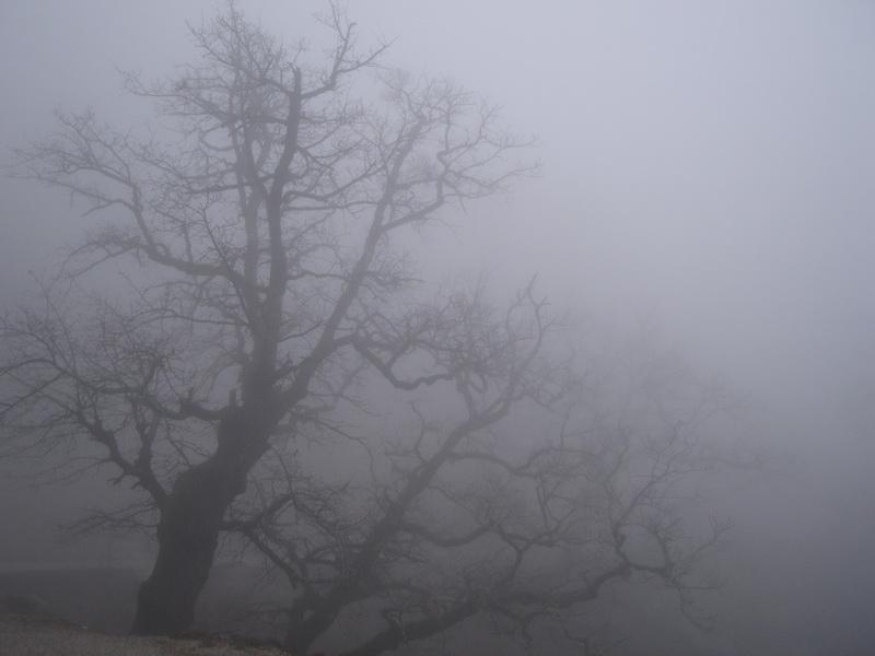 На Тернопільщині очікують погіршення погодних умов