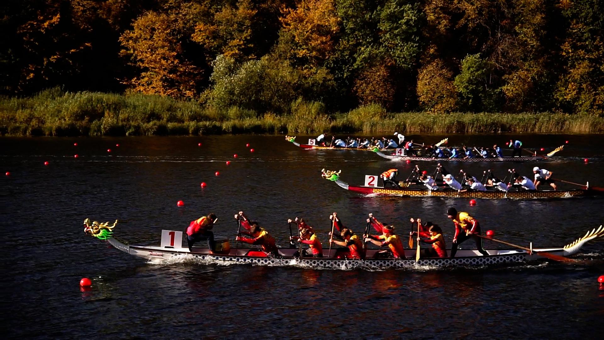 Одразу два чемпіонати України з веслування на човнах «драконах» приймав Тернопіль минулими вихідними