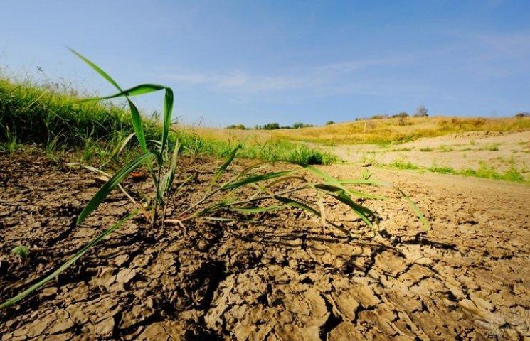 За забруднення землі оштрафували на 152 тисячі підприємство з Тернопільщини